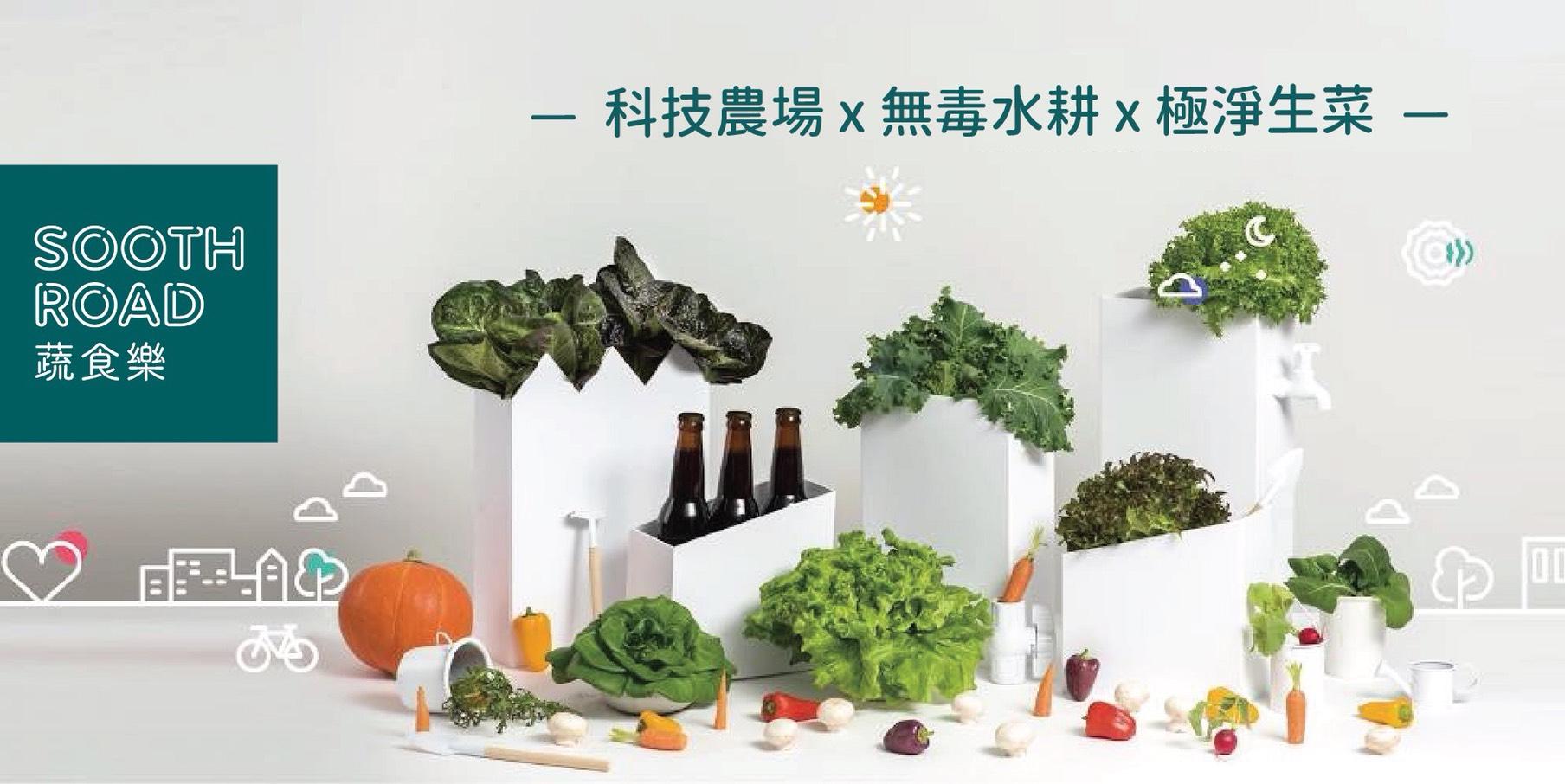 ▲防疫美食推薦-蔬食樂水耕蔬菜