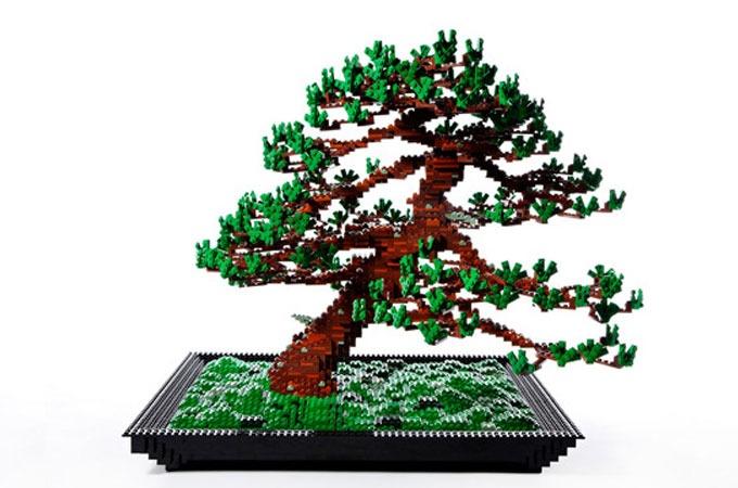 Medium_makoto-azuma-bonsai-tree-1