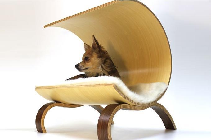 Medium_dog-pod-2.0-1